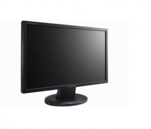 Computer monitor information for Kides