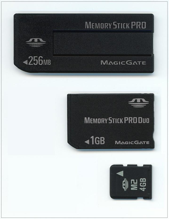Computer Memory - Memory Stick